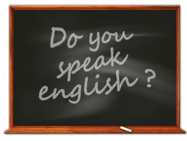 ブラジル人に英語は通じる?レベルから発音の訛りまで詳しく解説