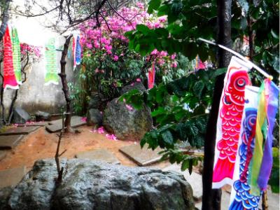 ブラジルの日本人街リベルダーデ地区の観光スポット5選【元在住者厳選】