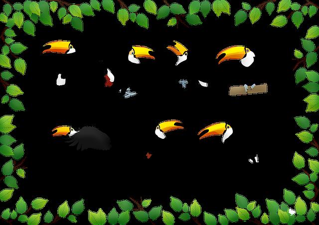 ブラジルの鳥「トゥカーノ」の生態を解説!日本で見られる場所も紹介