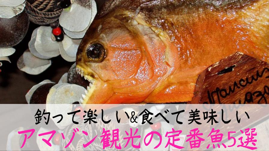 アマゾン川の魚5選!観光で食べられる巨大魚から危険種まで